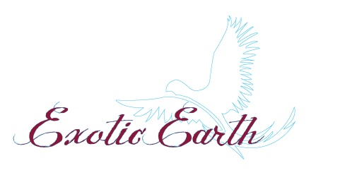 castle baths logo exotic earth spa and bath