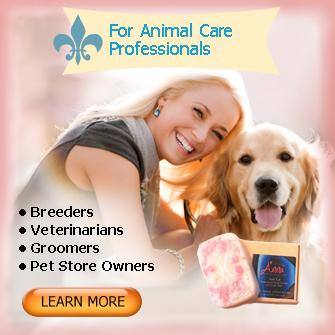 animal care affiliate
